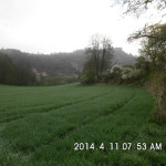 Junut2014_36